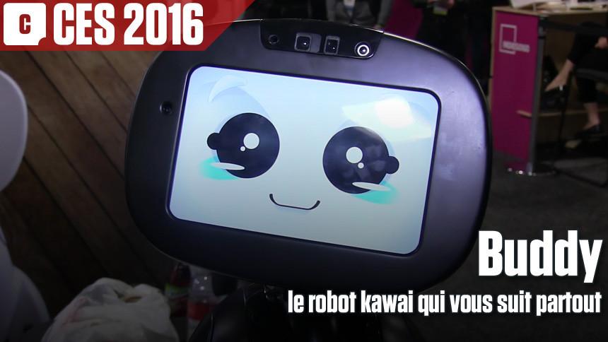 Buddy, le robot kawai qui vous suit partout
