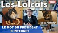 Vidéo Lolcats sur YouTube : l'allocution solennelle du Président de l'Internet !