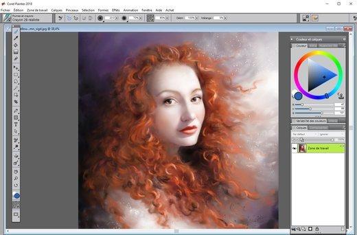 0208000008778120-photo-corel-painter.jpg