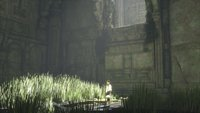 00c8000008076412-photo-the-last-guardian-ps4.jpg