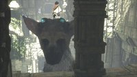 00c8000008076414-photo-the-last-guardian-ps4.jpg