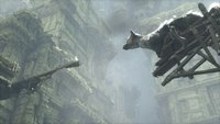 00c8000008076418-photo-the-last-guardian-ps4.jpg