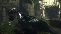 00c8000008076420-photo-the-last-guardian-ps4.jpg