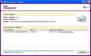 012c000000339040-photo-mcafee-virusscan2006-analyse-en-cours.jpg