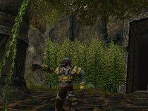 00d2000000201952-photo-dungeons-dragons-online-stormreach.jpg