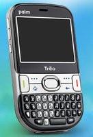 000000C800674070-photo-palm-tr-o-500.jpg