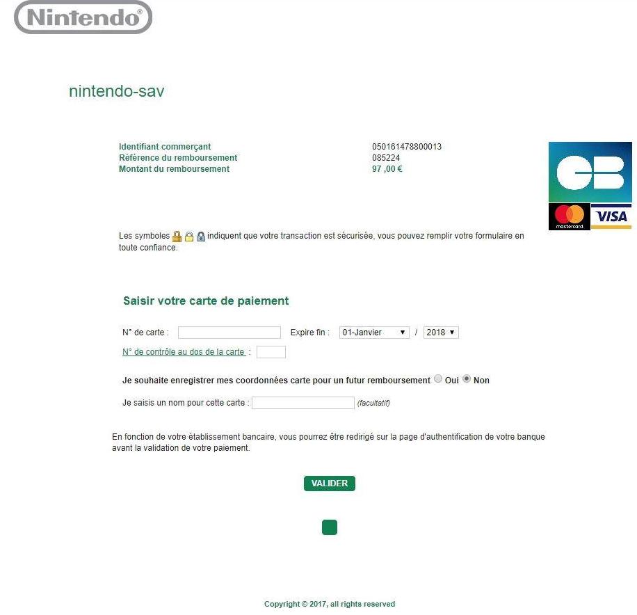 Fake Nintendo Payement