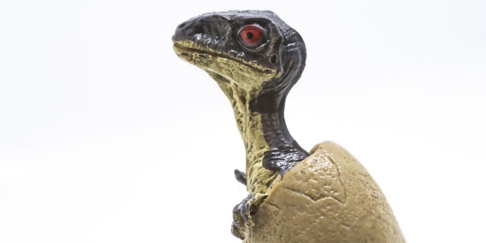 Un dinosaure en plastique c'est fantastique