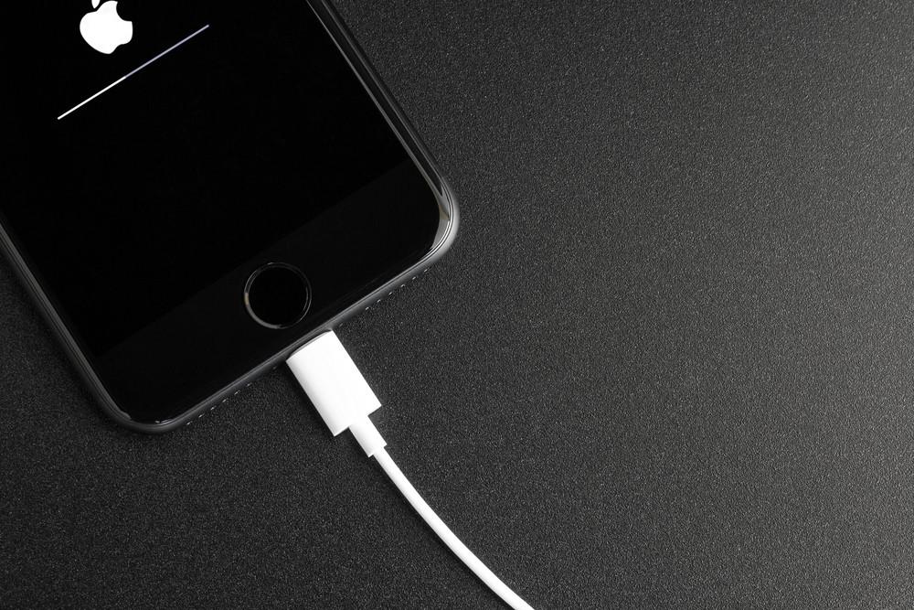 iPhone port Lightning