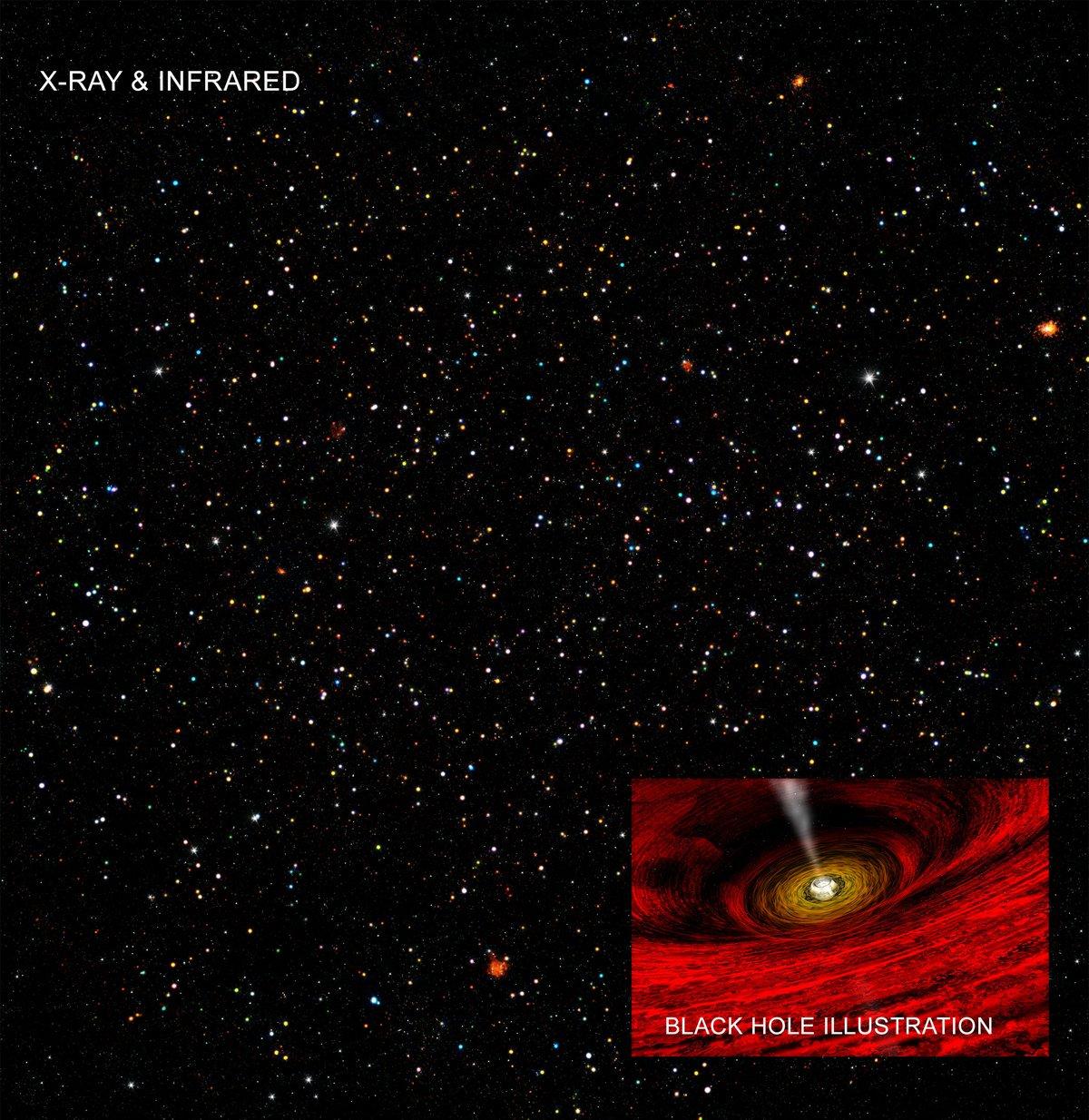 Intermediate-mass black holes