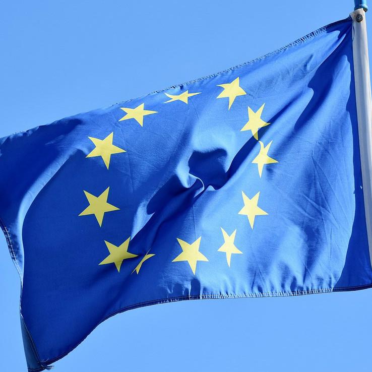 drapeau union européenne.jpg_cropped_738x738