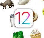 iOS 12.2 provoque un bug d'appels 4G chez SFR et RED