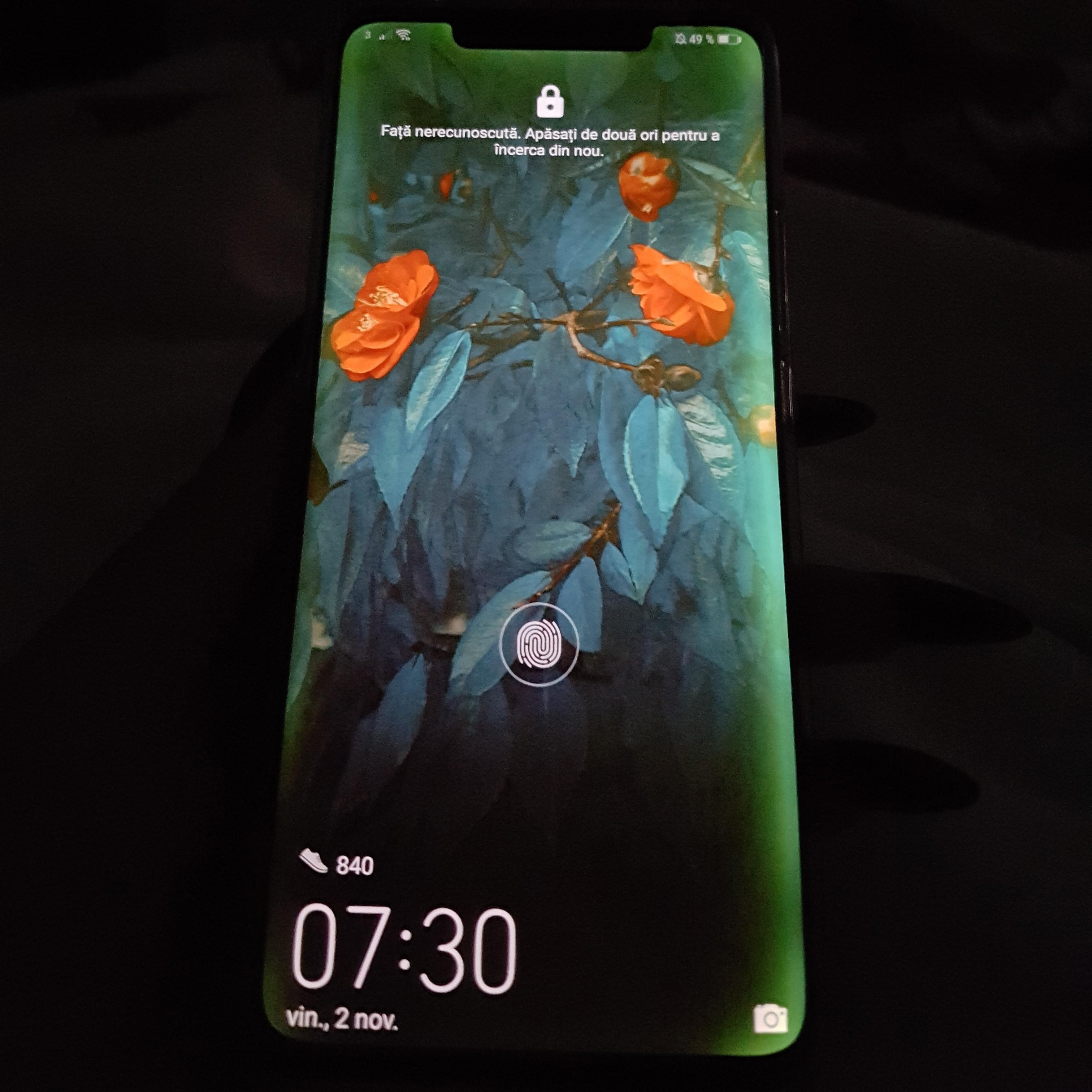Des Bordures Vertes Sur Lécran Du Huawei Mate 20 Pro