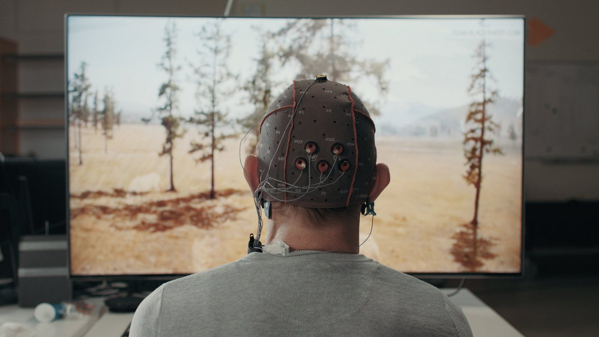 Samsung Project Pontis cerveau