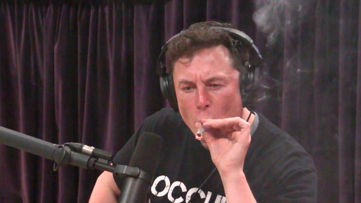 Elon Musk blunt