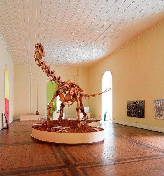 musée brésil google dinosaure.jpg