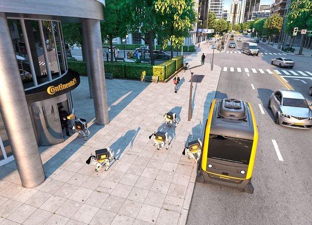 continental robots chien.jpg