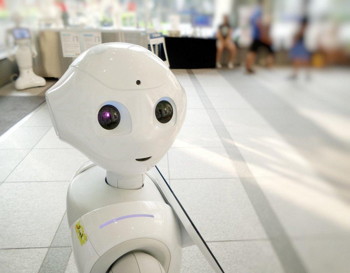 hôtel-robot-japon.jpg