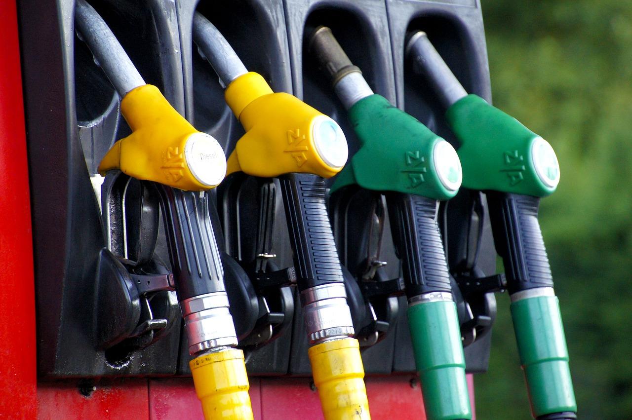 Le Conseil constitutionnel confirme que l'huile de palme n'est pas un biocarburant