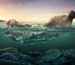 Le Parlement de l'UE veut définitivement mettre fin aux plastiques jetables dès 2021