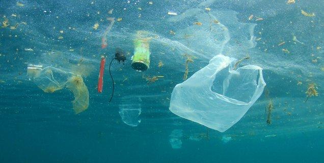 Un nouveau plastique biodégradable à base d'amidon et de cellulose