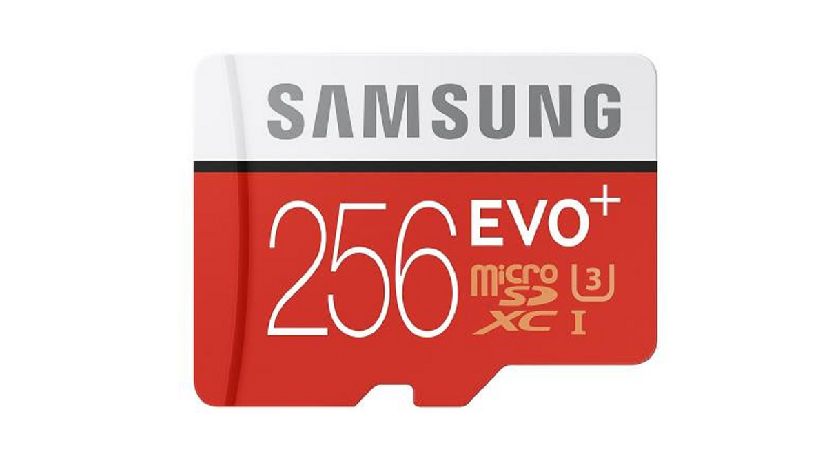 Carte Micro SD Samsung EVO+ 256 Go