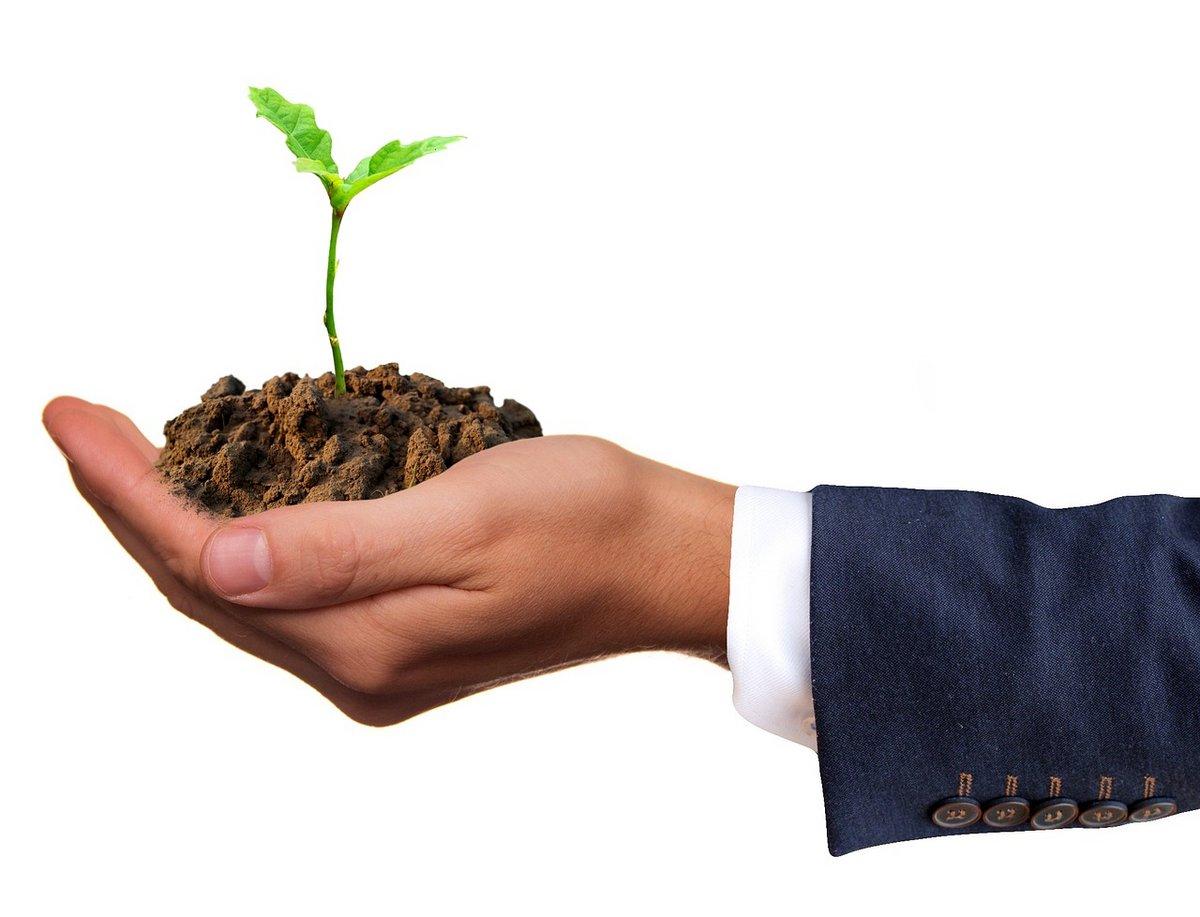 croissance environnement