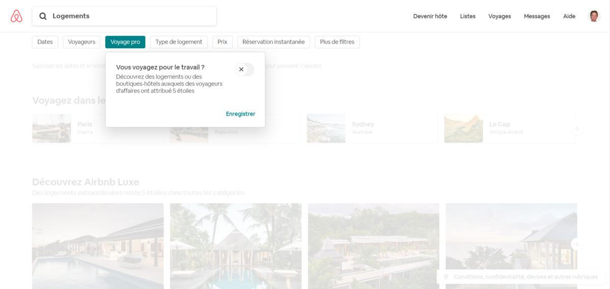 Screenshot-Logements-Airbnb-Pro.png