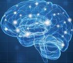 Des chercheurs du MIT placent des milliers de synapses artificielles sur une micropuce