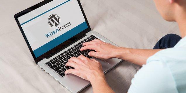 Wordpress : les sites utilisant le thème OneTone sont vulnérables à la création de backdoors