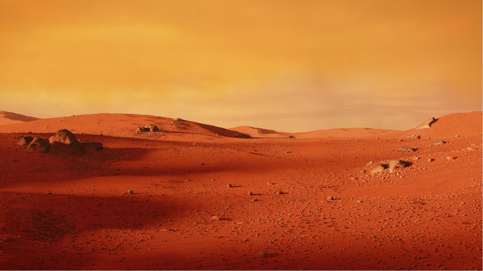 Il faudrait 20 ans pour bâtir une ville habitable sur Mars, d'après Elon Musk