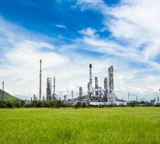 Dépollution : les plantes peuvent-elles aussi servir de bio-raffinerie ?