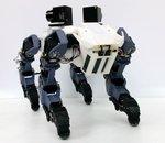 Découvrez en vidéo ce robot quadrupède capable de grimper une échelle