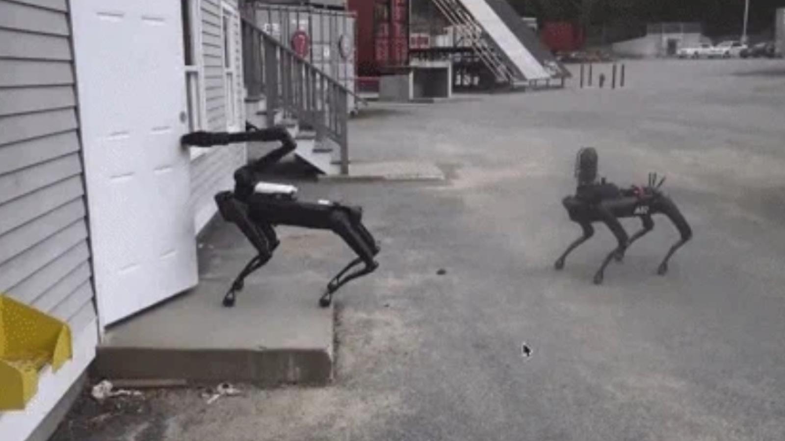 La police a testé le robot-chien Spot Mini