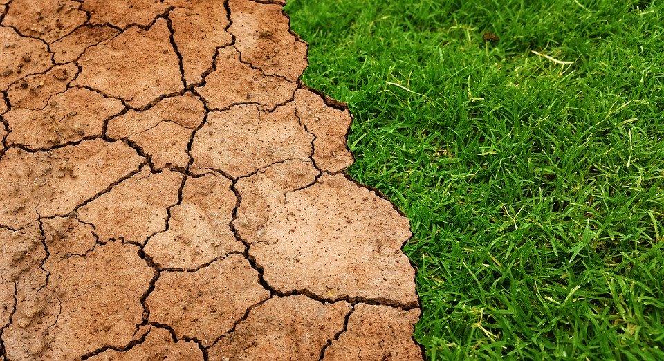 Changement réchauffement climatique
