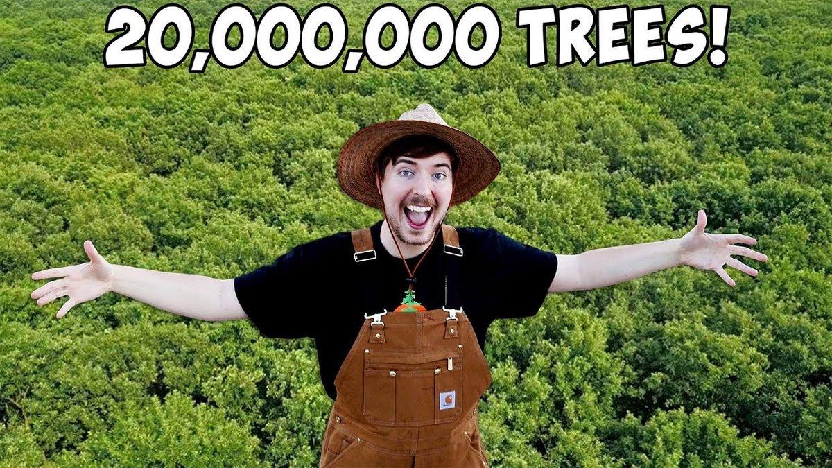 teamtrees.jpg