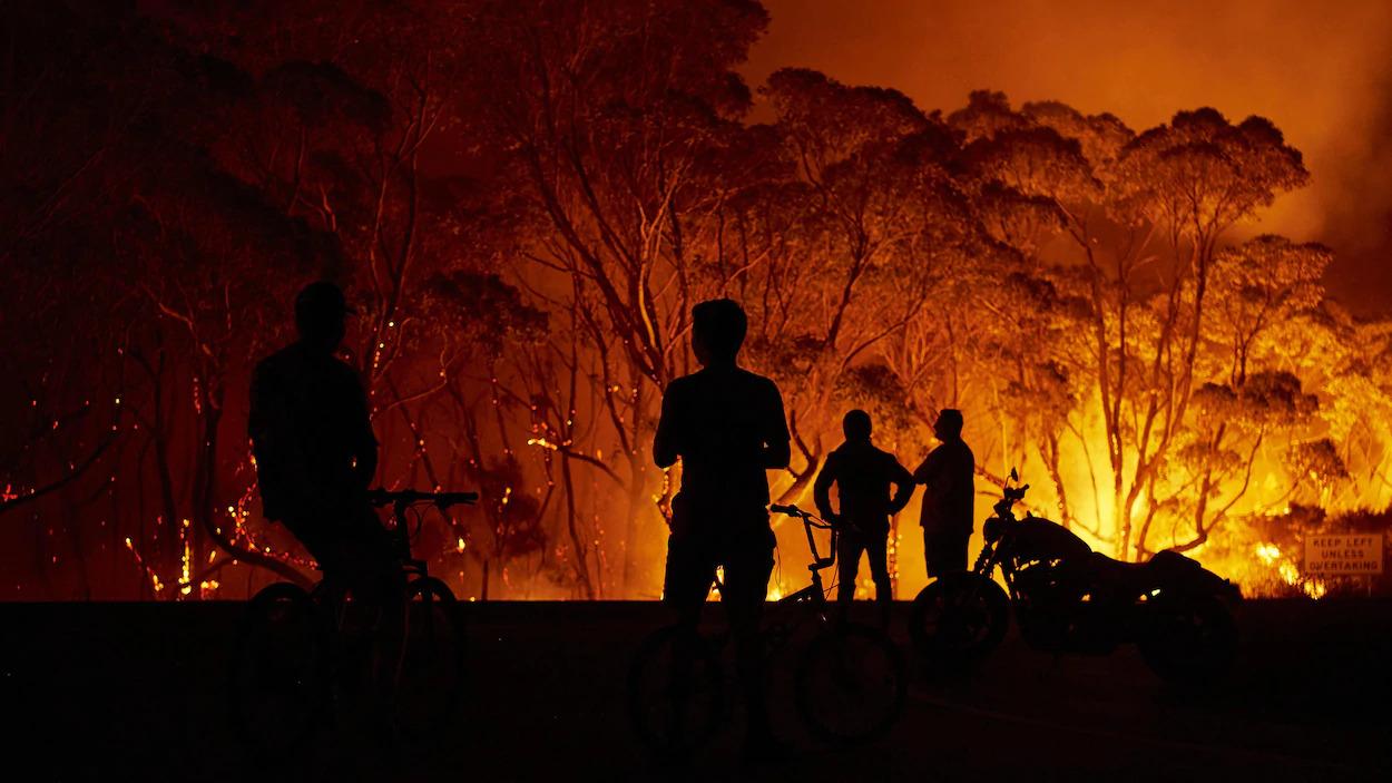 """Résultat de recherche d'images pour """"Australie feux"""""""