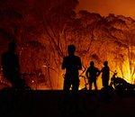 Sur Twitter, la conspiration enfle concernant l'origine des feux en Australie