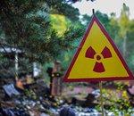 Fukushima : là où les êtres humains ont disparu, la faune s'est largement développée