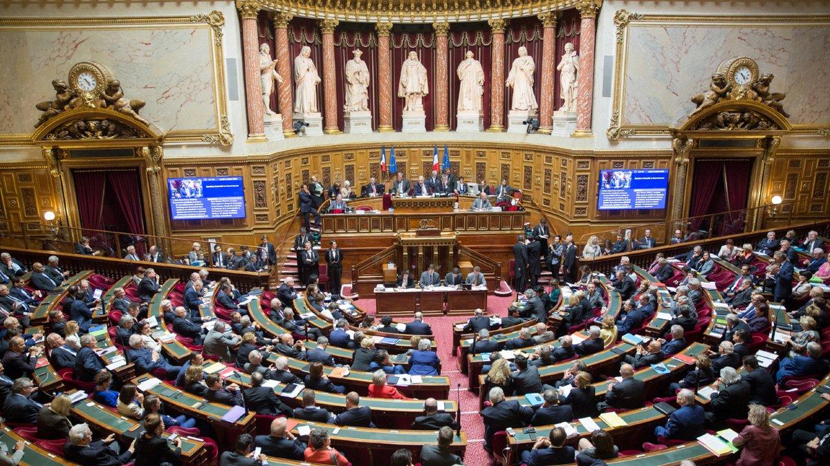sénat-hemicycle.jpg © senat.fr