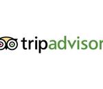 TripAdvisor : des centaines d'emplois supprimés, la concurrence de Google en cause