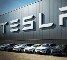 La justice allemande demande à Tesla de mettre en pause la construction de sa Gigafactory