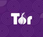 Tor se sépare d'un tiers de ses effectifs à cause du Covid-19