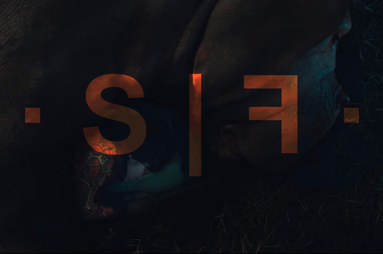 · S | F · Avec Okja, votre chronique célèbre l'Art et le cochon