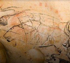 À la rencontre des fresques préhistoriques de la grotte Chauvet en VR