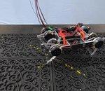 Un robot a appris à marcher grâce à un algorithme de Google