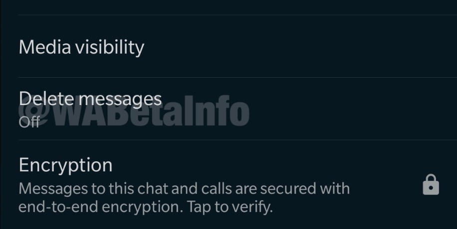WhatsApp autodestruction message