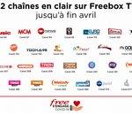 Free offre de nouvelles chaînes à ses abonnés durant le confinement