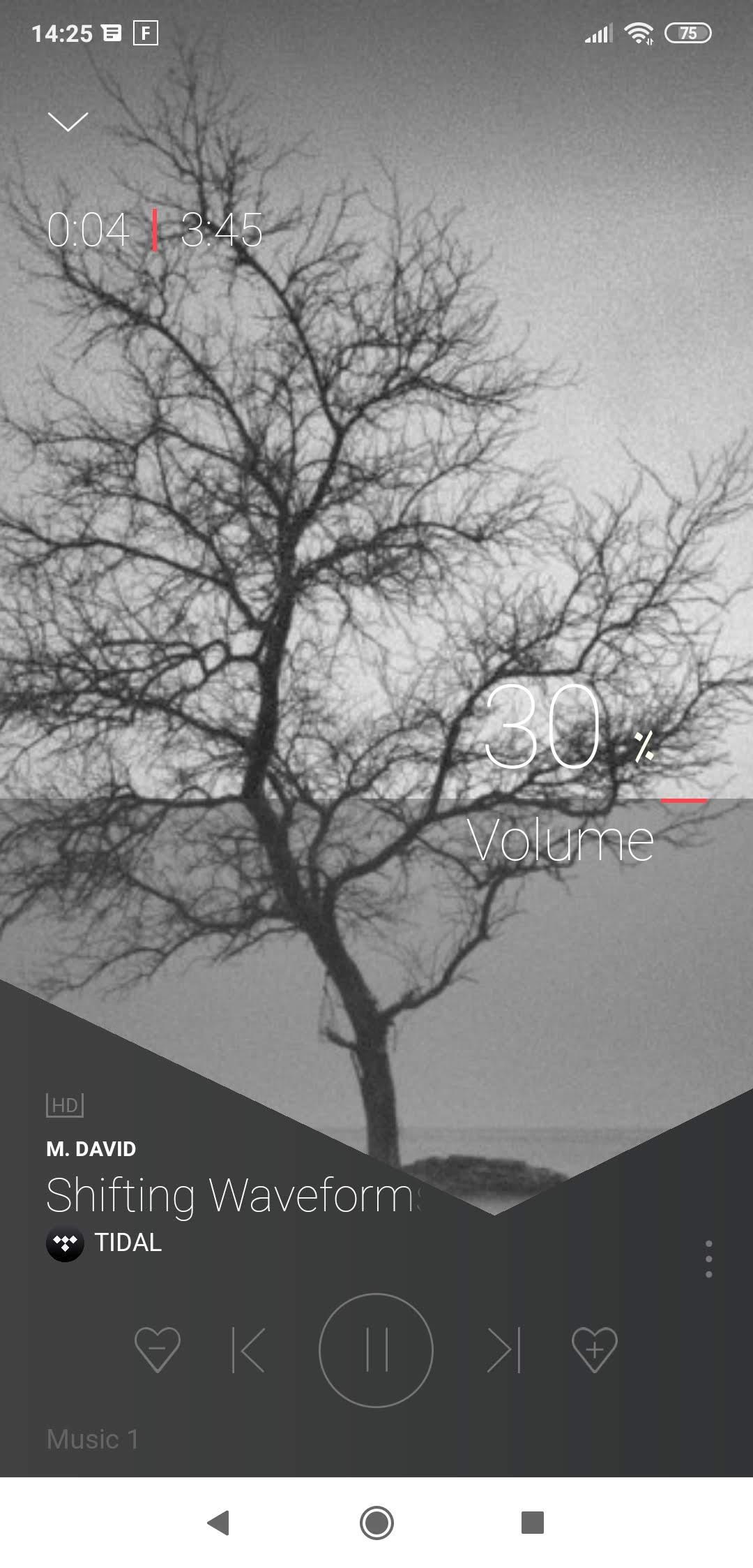 Dynaudio Music 1 - Lecteur audio