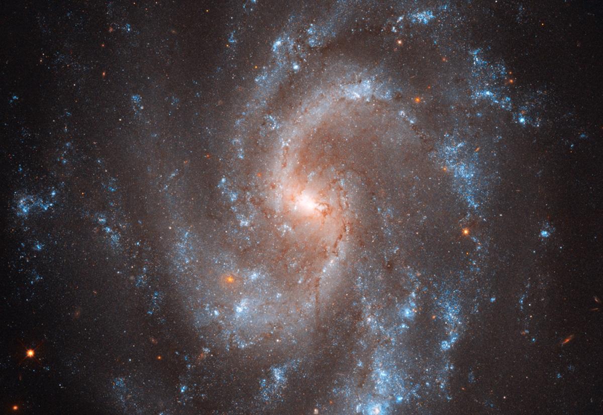 Galaxie Hubble ngc-5584